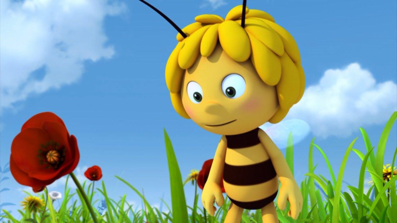 картинки пчелка майя смешные да, настолько смертельно