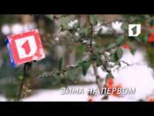 "Ролик ""Зима на Первом"". №1"