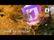 "Ролик ""Зима на Первом"". №3"